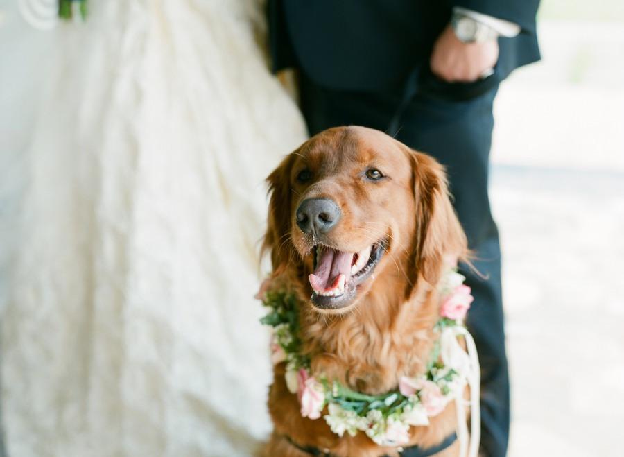 clicking the wedding pose