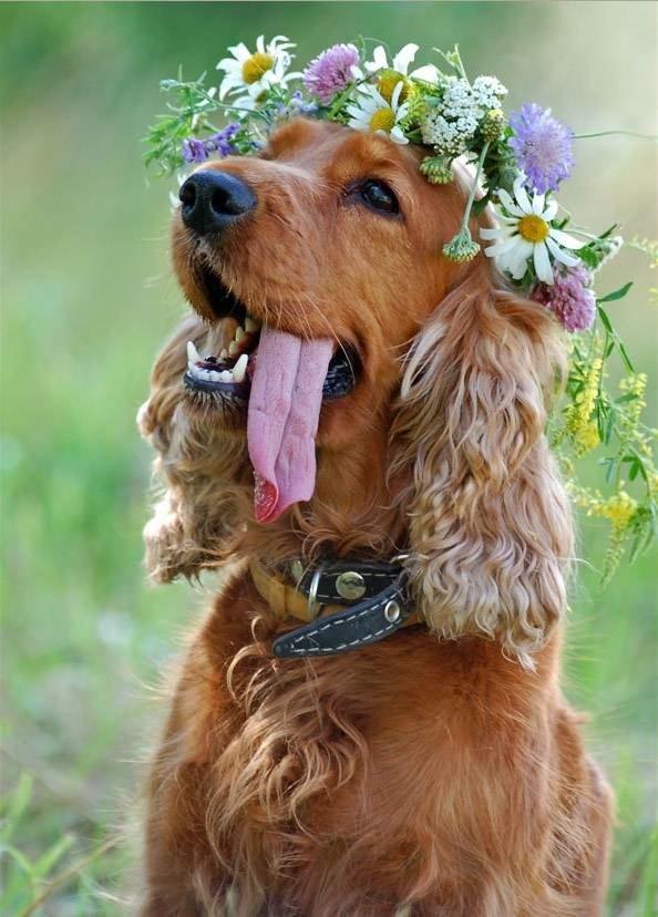 floral makeup in wedding