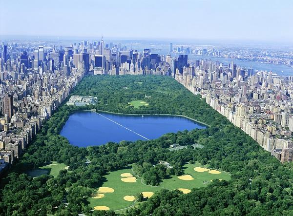 Central Park in NYC | 123WeddingCards