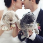 Easter Weddings @123WeddingCards