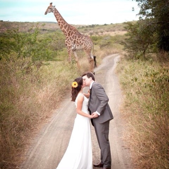 South African Wedding Traditions- 123WeddingCards