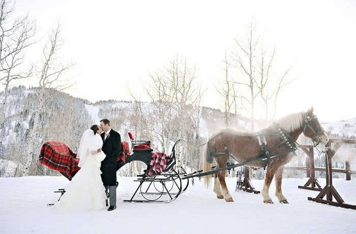 Sleigh Ride for the Groom &hisBride -123WeddingCards
