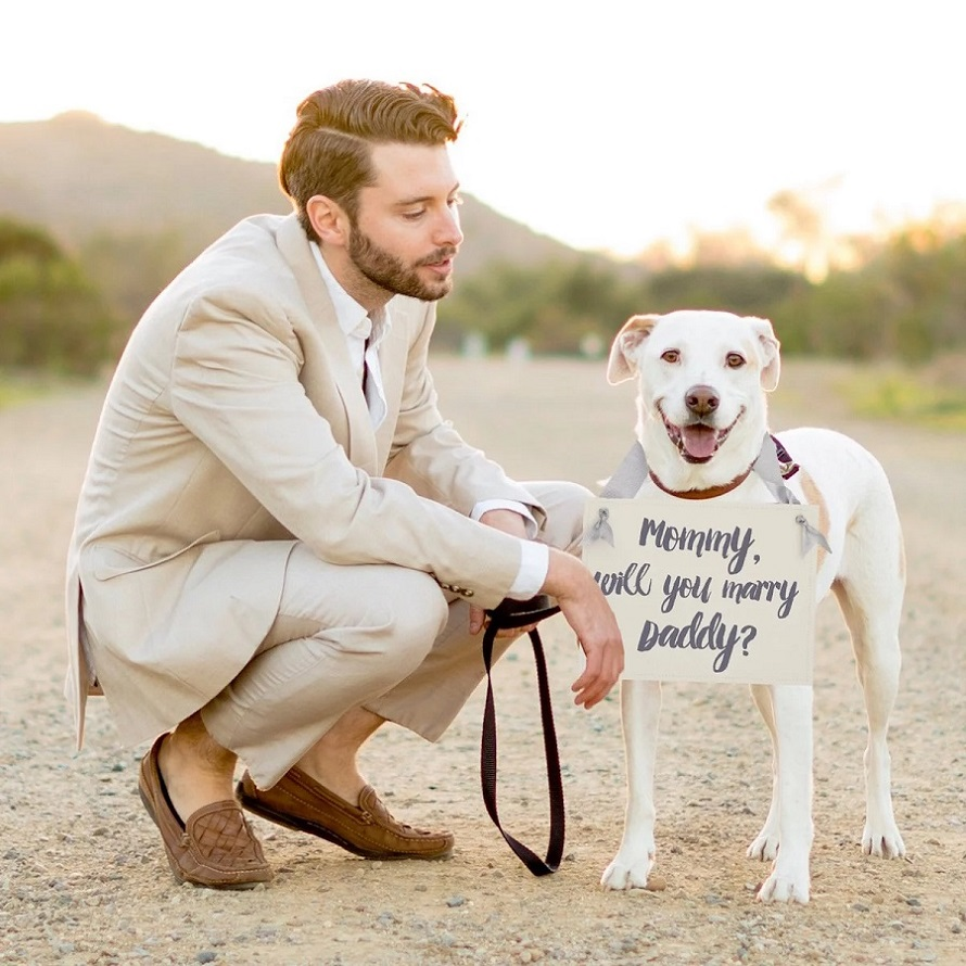 Include pets in the proposal - 123WeddingCards